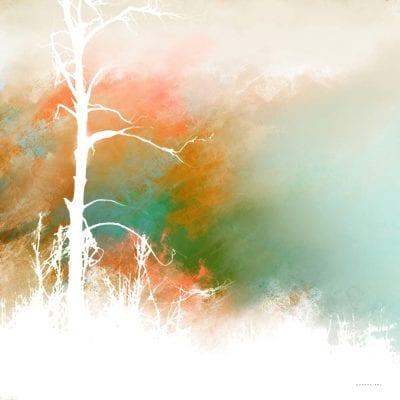 עץ ערום