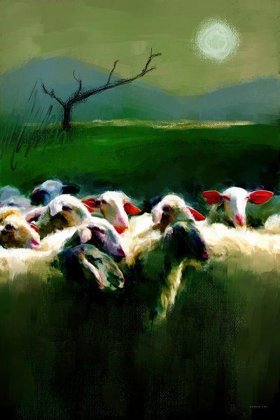 ללא רועה