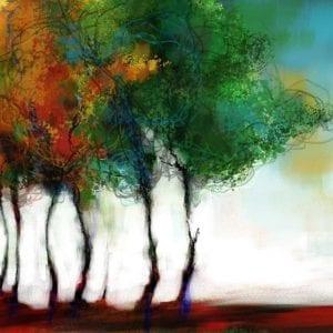 העצים שלימדו אותי פסדובלה